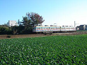 銚子電鉄 犬吠駅付近