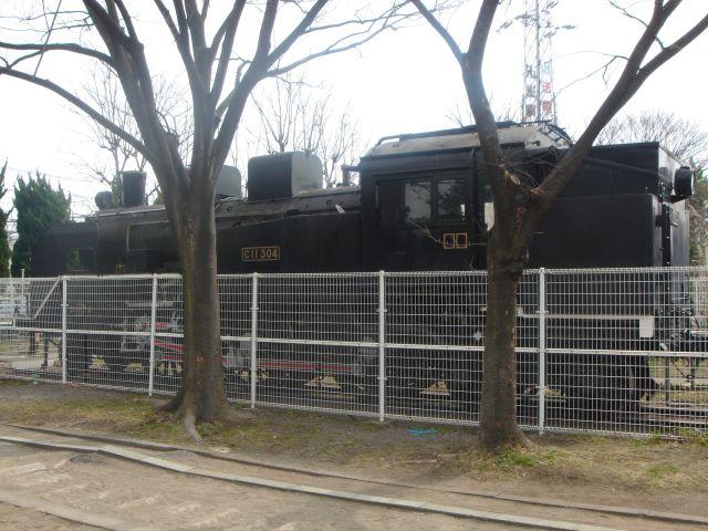 C11形機関車 (C11 304)