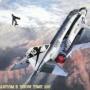 ハセガワ F-4J SHOW TIME 100