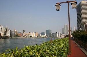佃大橋付近から隅田川を望む